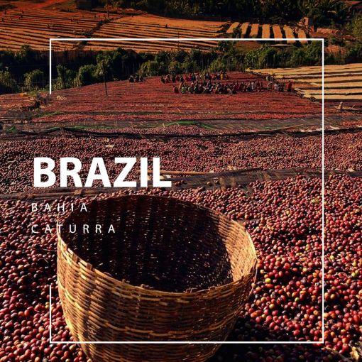 Brazil coffee / Brazīlijas kafija