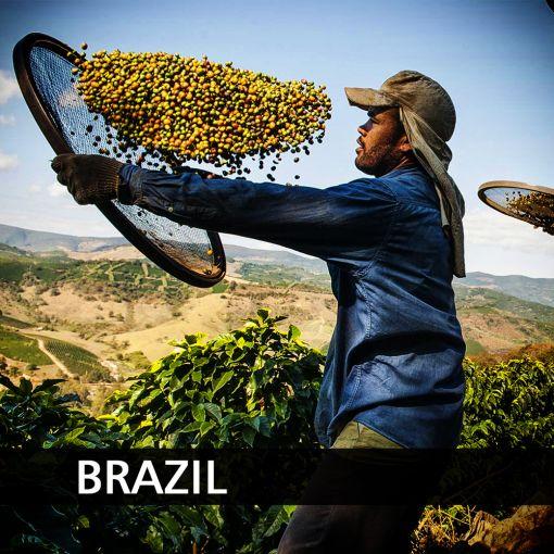 Brazīlija (Brazil Bahia) kafija, 1 kg