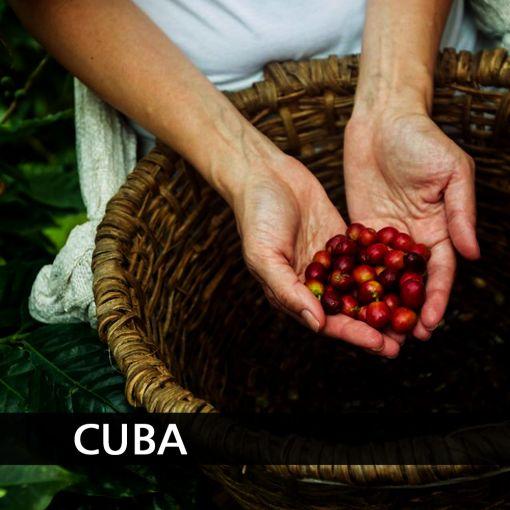 Kuba (Cuba Serrano Levado) kafija , 1 kg