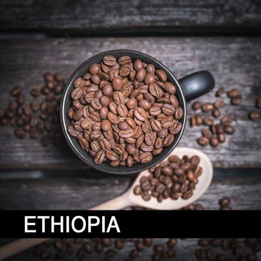 Etiopija Bale/Ethiopia Bale Mountain Wild Forest Natural, kafija