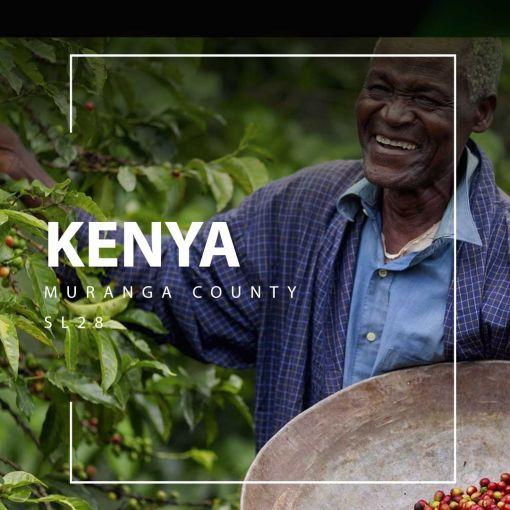 Kenijas kafija