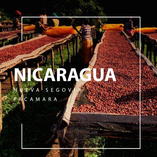 Nicaragua coffee / Nikaragva kafija