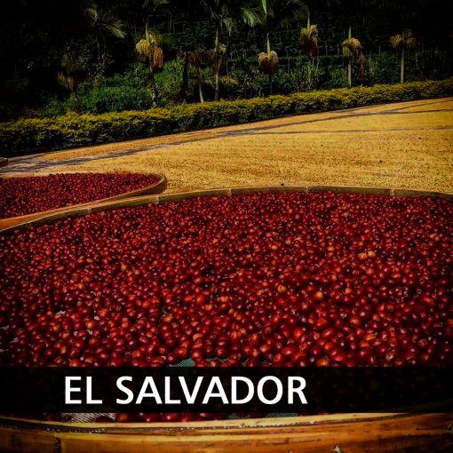 Salvadora (El Salvador Ilamatepec) kafija, 1 kg