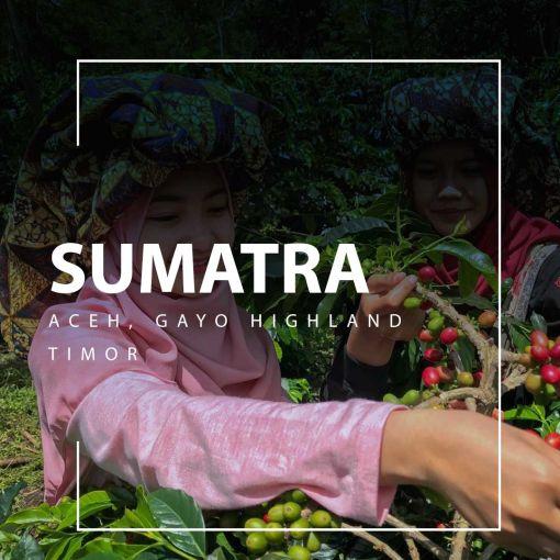 sumatra kafija